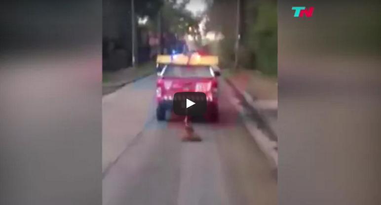 Trascinano un cane con il furgone! Ecco il perché di questo folle gesto che indigna il web